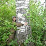 В Кузбассе высадят еще 7 млн саженцев деревьев