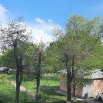 Температура воздуха в Кузбассе поднимется до +27