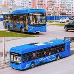 «Питеравто» за полгода перечислил в бюджет Новокузнецка миллионы
