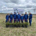 Угольщики поддержали масштабные высадки в Ижморском районе, приуроченные к 300-летию Кузбасса и Всемирному дню посадки леса