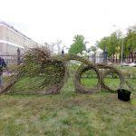 В Новокузнецке к 300-летию Кузбасса появилась работа в стиле ленд-арта