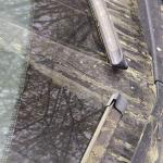 Идёт-гудёт зеленый шум: в СО РАН изучили зеленую пыль, вызвавшую тревогу кузбассовцев
