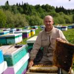 Спасение пчёл – дело общее!