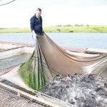 В Кемеровском округе продолжают развивать агротуризм рыбного профиля