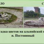 Жители Калтана пожаловались властям, что остались без красоты