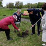 В кузбасском селе высадили деревья и кустарники в честь героев Великой Отечественной войны