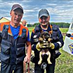 В Кемерове спасли двух щенков