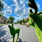 В Берёзовском появились большие топиарные фигуры