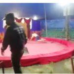 СК организовал проверку после нападения медведя на артистку цирка в Берёзовском