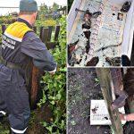Кузбасские спасатели вытащили застрявших птенцов в заборе