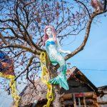 В Юрге местные жители делают селфи с русалкой