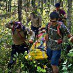 Кузбасские спасатели эвакуировали из тайги сборщиков шишек, упавших с дерева
