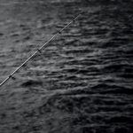 Алтайского депутата будут судить за рыбалку