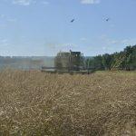 Кузбасс экспортировал в США сельхозпродукты на сумму 195 миллионов долларов