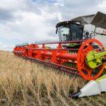 В Кузбассе собрали 1 миллион 232 тысячи тонн зерна