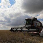 В Кузбассе аграрии отвоёвывают у непогоды свой хлеб