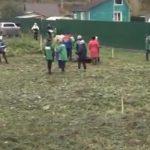 В Новокузнецком районе появилась аллея ветеранов