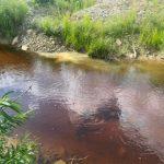В Кузбассе за загрязнение рек наказали рублём золотодобытчиков