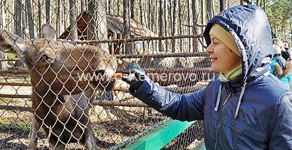Зоопарк в музее-заповеднике Томская писаница