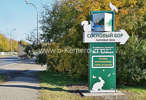 Указатель заезда в бор с ул.Терешковой