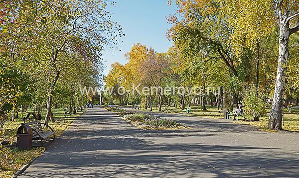 Аллея на набережной в Кировском районе
