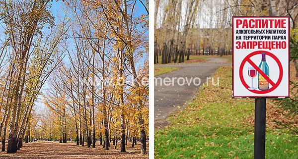 В Комсомольском парке Кемерово