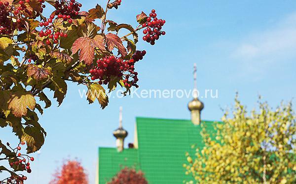 На территории храма Святой Блаженной Ксении Петербуржской