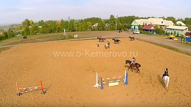 """конно-спортивный клуб """"Фелиция"""" Кемерово"""