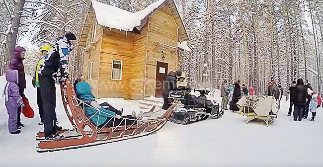 Хаски-лэнд в Кемерово